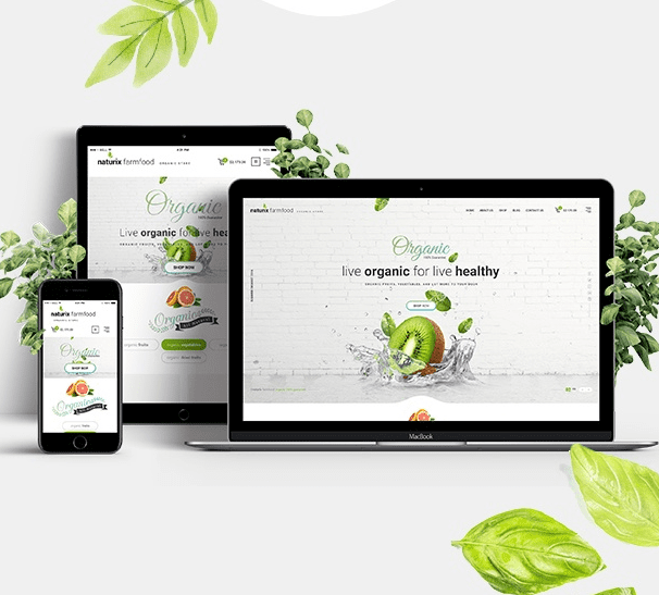 Eco Friendly Websites we can build you 2